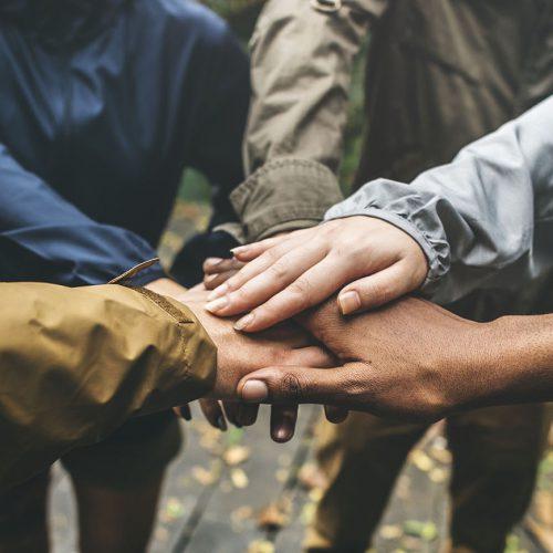 Sức mạnh của sự gắn kết